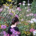 写真: 花の中