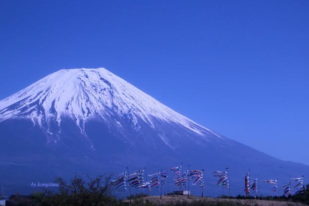 やっぱり富士山