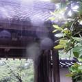 Photos: 雨の山門