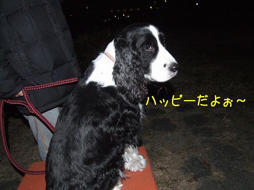 s-myu2008_1227(083)