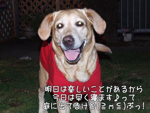 s-myu2009_0131(013)