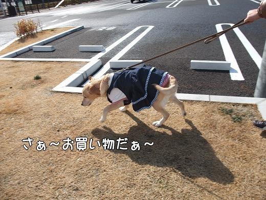 s-myu2009_0220(002)