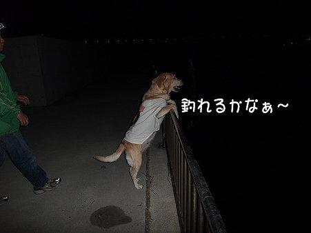 s-myu2009_0501(251)
