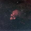 写真: NGC6334 出目金星雲