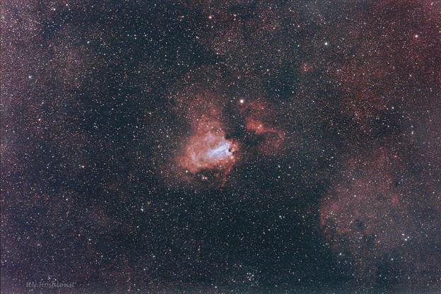 花菖蒲星雲