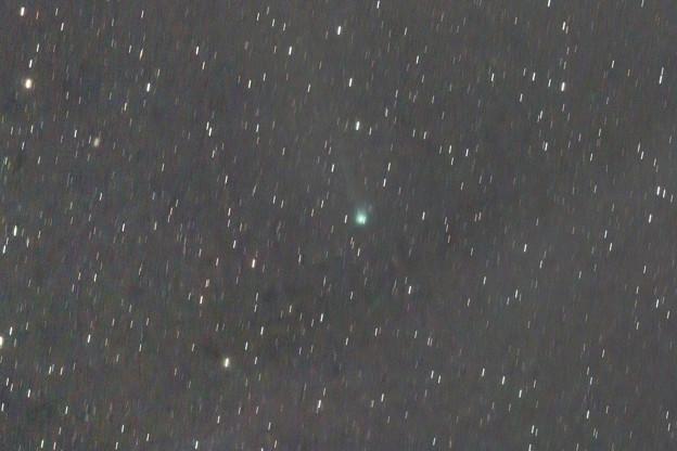 C/2018 V1 マックホルツ=藤川=岩本彗星