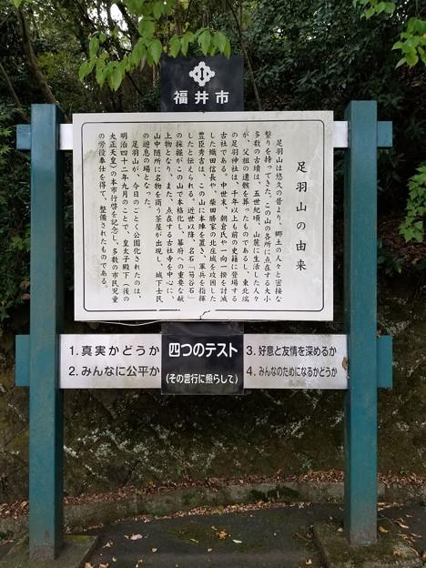 Photos: はるばる来たぜ福井市、その2