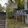 Photos: はるばる来たぜ福井市、その3