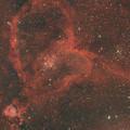 Photos: IC1805 ハート星雲