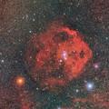 エンゼルフィッシュ星雲20200118