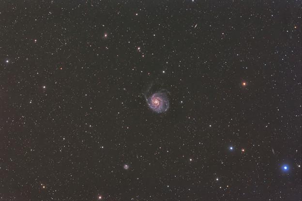 Photos: M101 回転花火銀河 20200224