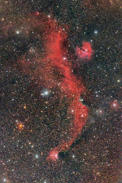 IC2177かもめ星雲