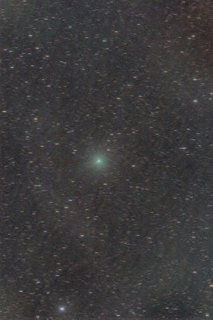 Photos: 20200325未明のアトラス彗星