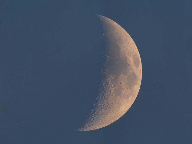 夕暮れの月齢6.3