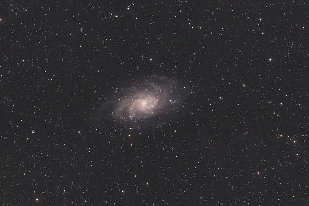 M33たびたび