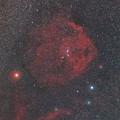 エンゼルフィッシュとアトラス彗星