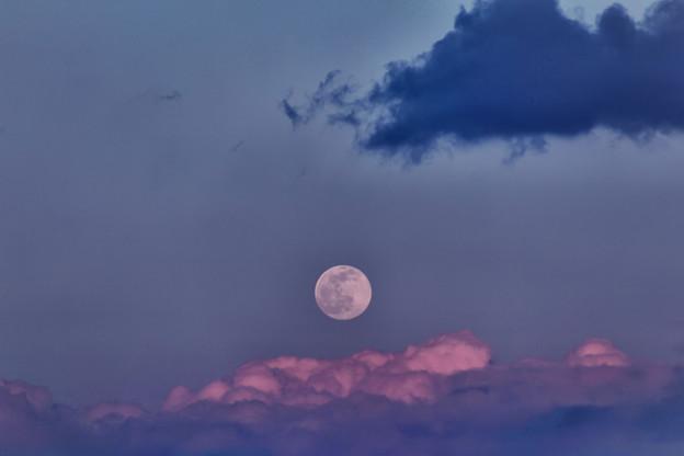 Photos: 月齢15.2の月の出