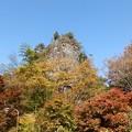 写真: 11月9日「古岩屋の紅葉」
