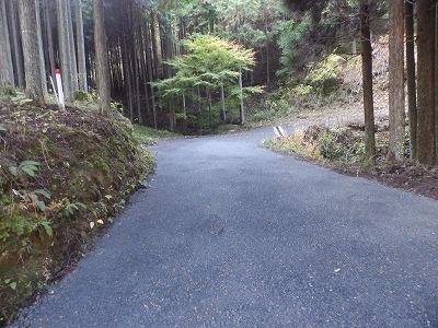 11月12日「山の散歩道」