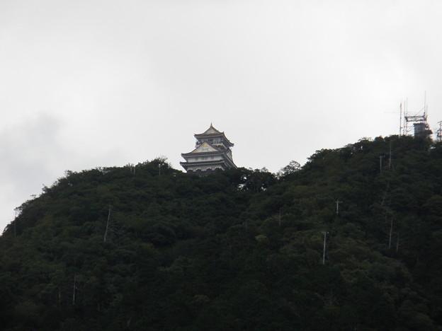岐阜城 2枚目