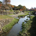 Photos: 緑地