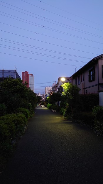 Photos: 4