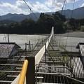 Photos: 吊り橋効果・・・