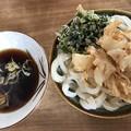 写真: udon