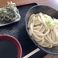 Photos: 安藤製麺所