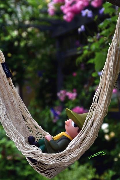 写真: スナフキンの休息