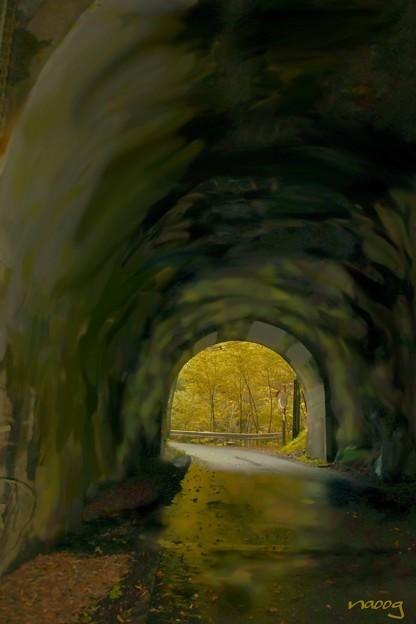 トンネル先の秋
