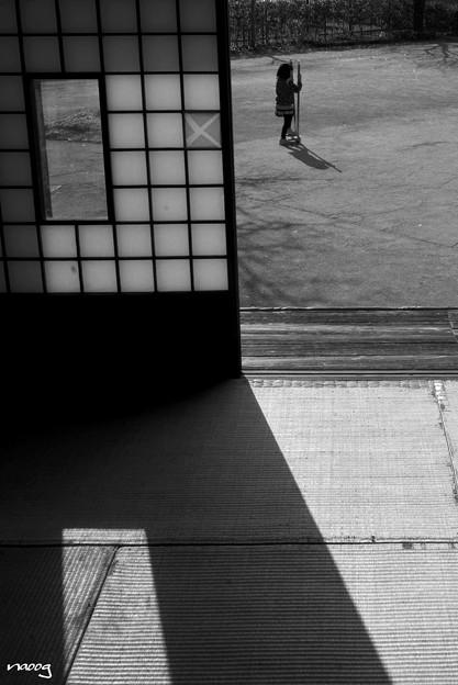 Photos: 商家の庭先