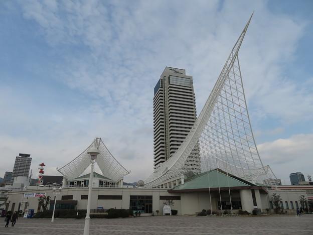 Kobe 海洋博物館