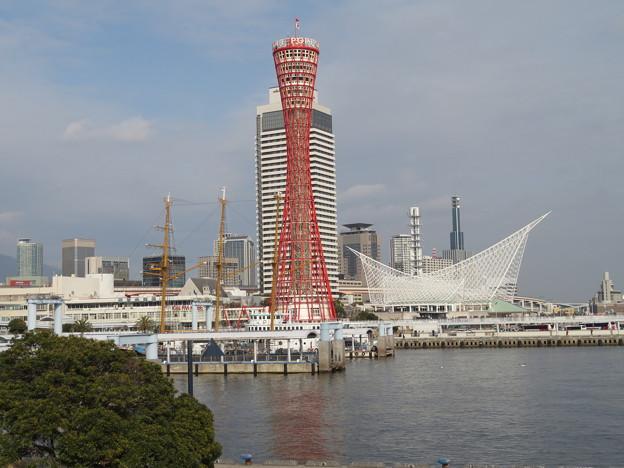 Kobe 赤と白