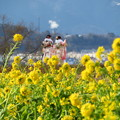 Photos: 祝! 成人式