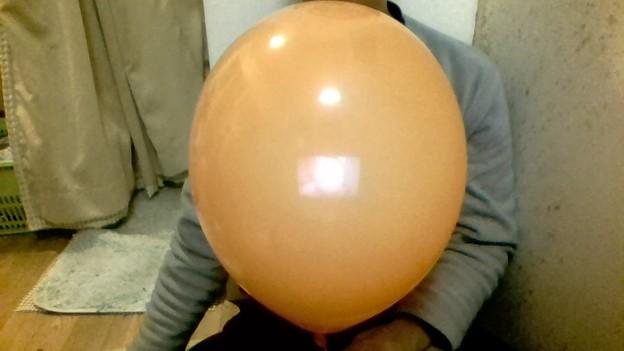 ダイソー風船 11インチオレンジ
