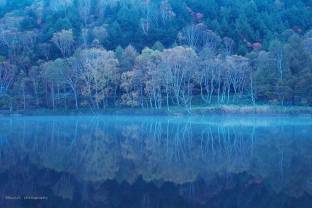 静寂の木戸池♪