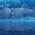 Photos: 静寂の木戸池♪