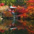 Photos: 弁天堂の紅葉♪