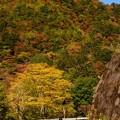 Photos: 紅葉ライダー♪