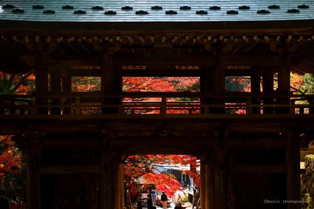 讃岐路の紅葉~大窪神社山門  ♪