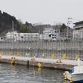 写真: <防潮堤施工ミス>県現状維持案を提示へ きょうの会合で提示