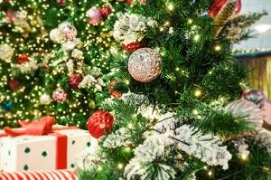 第10回 釜山クリスマスツリー文化祭り(2018)