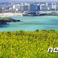 """韓国で広がる""""シャイ・ジャパン""""… 不買運動のはずが旧盆休暇の人気旅行上位に日本,jpg"""
