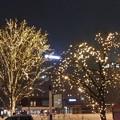 帯広駅北のイルミネーション