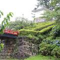 Photos: IMG_0017  東堀端の上の常盤木門に通じる道