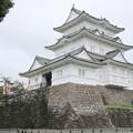 IMG_0034  小田原城(風魔忍者ベース基地)を左より望む