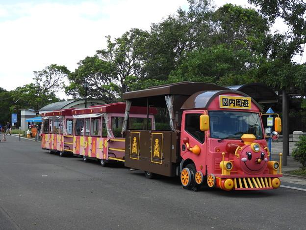 DSCN1357葛西臨海公園内の乗り物
