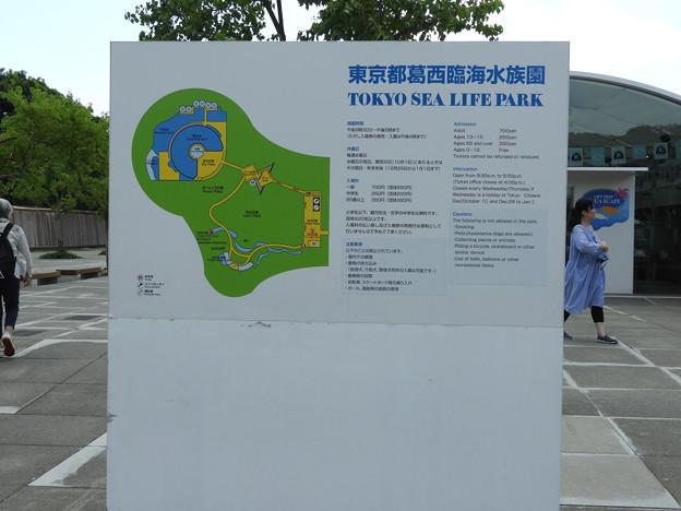 DSCN1360葛西臨海水族園の園内案内図