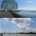 Photos: DSCN1372 水族園周辺